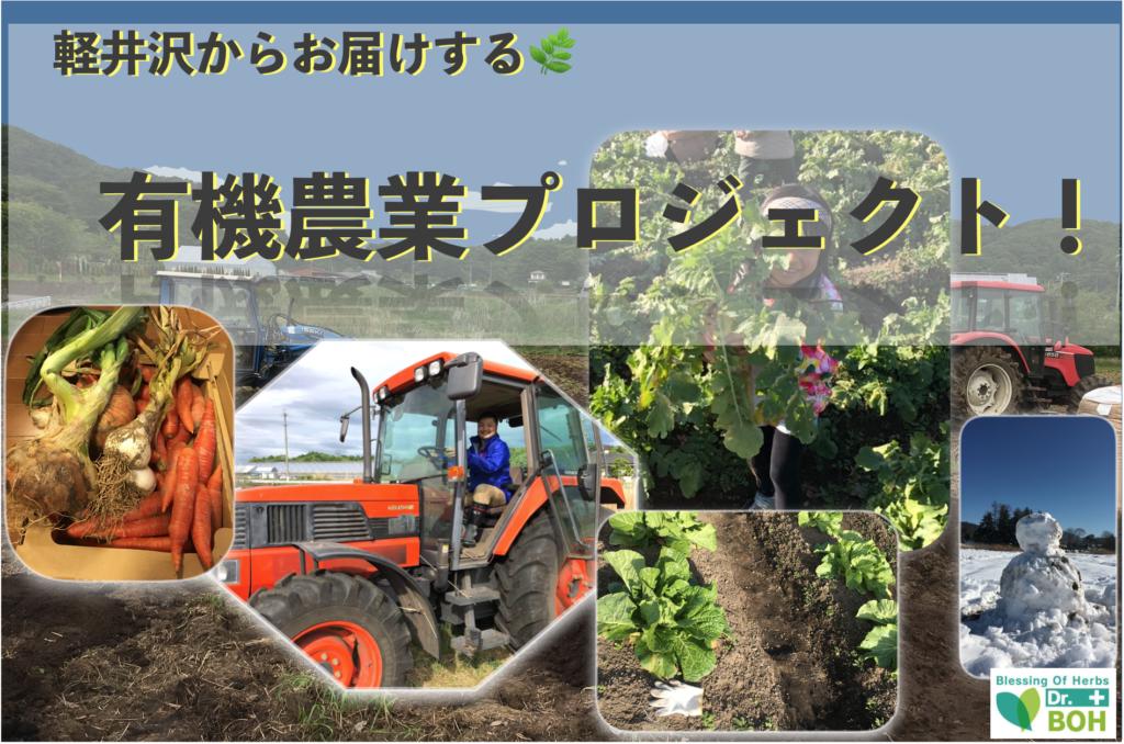 2020年畑支援プロジェクト